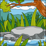 Vector illustration, natural background (Pond) Royalty Free Stock Images