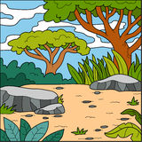 Vector illustration, natural background (savanna) Royalty Free Stock Photography