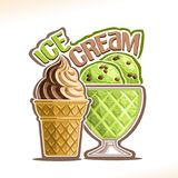 Vector illustration of natural Ice Cream Stock Image