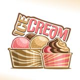 Vector illustration of natural Ice Cream Royalty Free Stock Photos