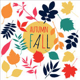 Vector illustration. Nature background of autumn. v Royalty Free Stock Images