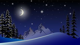 Vector illustration of a New Year`s night landscape. Stock Images