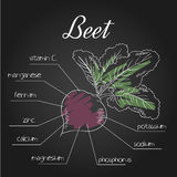 Vector illustration of nutrient list for beet Stock Photo