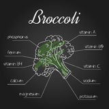 Vector illustration of nutrient list for broccoli Royalty Free Stock Image