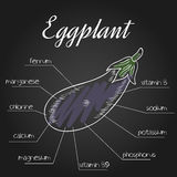 Vector illustration of nutrient list for eggplant Royalty Free Stock Photo