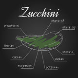 Vector illustration of nutrient list for zucchini Stock Image