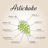 Vector illustration of nutrients list for artichoke.  Royalty Free Stock Images
