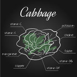 Vector illustration of nutrients list for cabbage on chalkboard backdrop.  Royalty Free Stock Photography