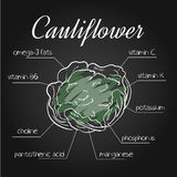 Vector illustration of nutrients list for cauliflower on chalkboard backdrop.  Stock Photos