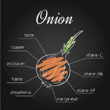 Vector illustration of nutrients list for  onion on chalkboard backdrop.  Royalty Free Stock Image