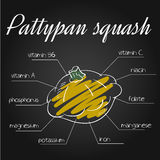Vector illustration of nutrients list for pattypan squash on chalkboard backdrop.  Stock Photography