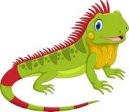 Free Vector Illustration Of Cute Iguana Cartoon Stock Photography - 126506392