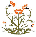 Vector Illustration Of Flower Royalty Free Stock Image