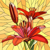 Vector Illustration Of Flower Red Lilies. Royalty Free Stock Photos