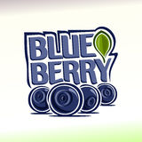 Vector Illustration On The Theme Of Blueberry Royalty Free Stock Photo