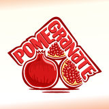 Vector Illustration On The Theme Of Pomegranate Royalty Free Stock Photography