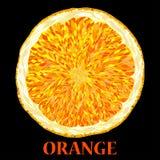 Vector Illustration of Orange Fruits. Royalty Free Stock Image