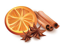 Vector Illustration of Orange Slice, Cinnamon Sticks and Star Anice  on White Background. Royalty Free Stock Photography
