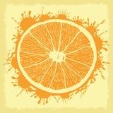 Vector illustration. Orange. Stock Images