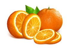 Vector illustration of oranges Stock Images
