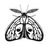 Vector illustration with ornamental butterfly. Black and white mystical moth with skull on wings, vector illustration of a butterfly isolated on white Royalty Free Stock Photography