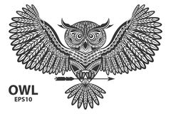 Vector illustration of owl. Royalty Free Stock Image