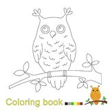 Vector illustration of owl sitting on the branch for coloring book. For kids vector illustration