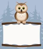 Vector illustration. Owl. Stock Photos