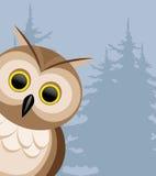 Vector illustration. Owl. Royalty Free Stock Photos