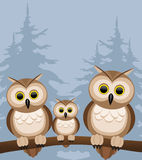Vector illustration. Owls. Royalty Free Stock Photo