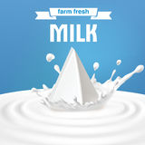 Vector illustration of packing of tetra pack with milk standing in the center of a dairy splash. Royalty Free Stock Images