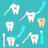 Vector illustration of cartoon teeth. Vector illustration. Painted in shape stock illustration