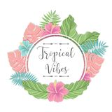 Vector illustration with palm leaves. Tropical label. Perfect for invitations, greeting cards, blogs, posters and more Royalty Free Stock Image