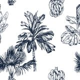 Vector Illustration of palm tree and banana fruit sketch for design, website, background, banner. Travel and vacation royalty free stock images
