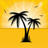 Vector illustration of palm trees . Royalty Free Stock Images