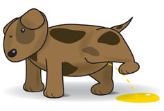Vector illustration of a peeing dog