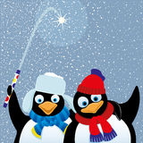 Vector illustration. Penguins. Stock Photos