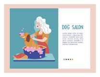 Vector illustration for pet hair salon, styling and grooming shop, pet store for dogs and cats. Cute dog at groomer salon.Vector illustration for pet hair salon vector illustration