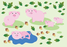 Vector Illustration of Pigs. Vector Illustration of pink Pigs on the green background Royalty Free Stock Image