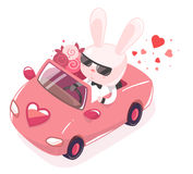 Vector illustration of pink bunny riding in red car Royalty Free Stock Photography