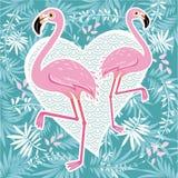 Vector illustration pink flamingo couple. Cool flamingo decorati Royalty Free Stock Photography