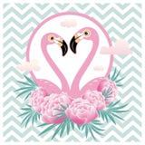 Vector illustration pink flamingo couple. Cool flamingo   Royalty Free Stock Image