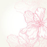 Vector illustration.Pink flowers Royalty Free Stock Images
