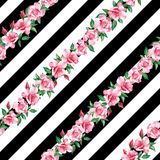 Rose seamless pattern black white stripe background. Vector illustration pink flowers rose on the line seamless pattern black white stripe background royalty free illustration