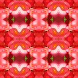 Vector illustration of pink mottled background Stock Image