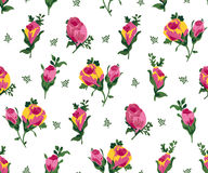 Vector illustration of pink and yellow roses Stock Photography