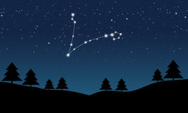 Vector illustration of Pisces constellation. On the background of starry sky and night landscape Stock Photos