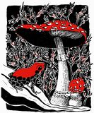 Vector illustration of poisonous frog and fly agaric mushrooms vector illustration
