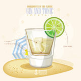 Vector illustration of popular alcoholic cocktail. Gin and tonic club alcohol shot. Stock Photos