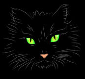 Vector illustration a portrait of a cat on a black Stock Images